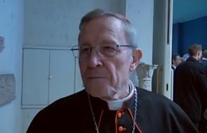 Kard. Kasper rozgoryczony postawą luteranów