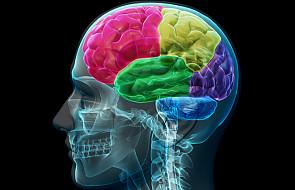 Dlaczego Bóg nie manipuluje w mózgach grzeszników?