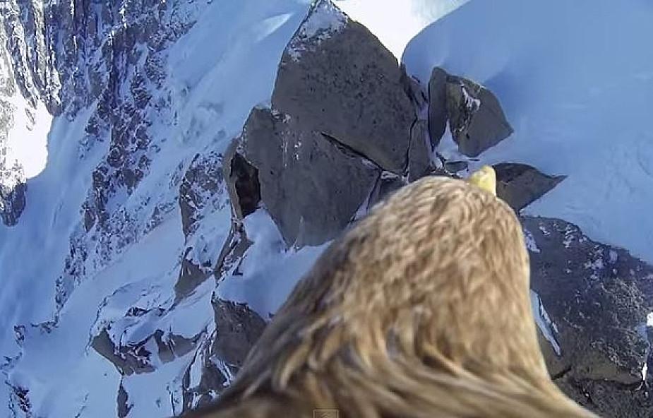 Zobacz Alpy z perspektywy... orła!
