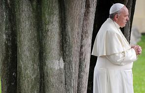 Papież Franciszek: trzeba opłakiwać wszystkie ofiary szaleństwa wojny