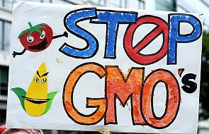 PE za przepisami ograniczającymi GMO