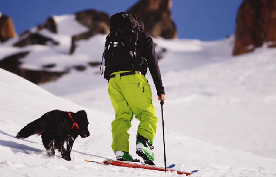 Pies, człowiek, góry i przygoda życia [WIDEO]