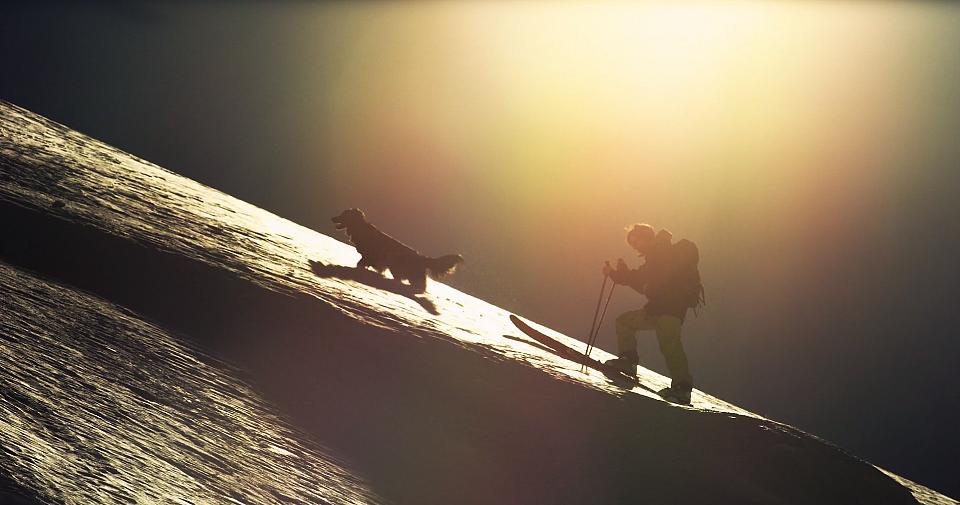 Pies, człowiek, góry i przygoda życia [WIDEO] - zdjęcie w treści artykułu nr 2