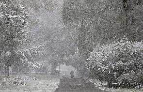 Zima nadchodzi: pierwszy śnieg w Europie