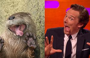 "Jak znany aktor reaguje na memy z jego ""podobizną"" [WIDEO]"