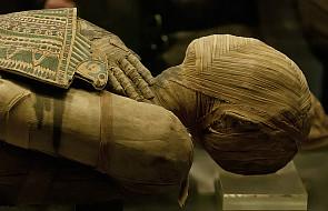 Polacy zbadają, czy starożytni Egipcjanie chorowali na raka