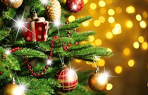 Choinka w symbolice Bożego Narodzenia