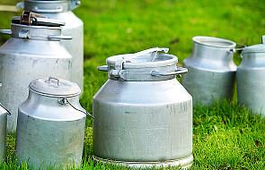 Od 1 kwietnia UE znosi limity produkcji mleka