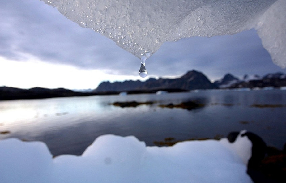 Obowiązki człowieka wobec środowiska