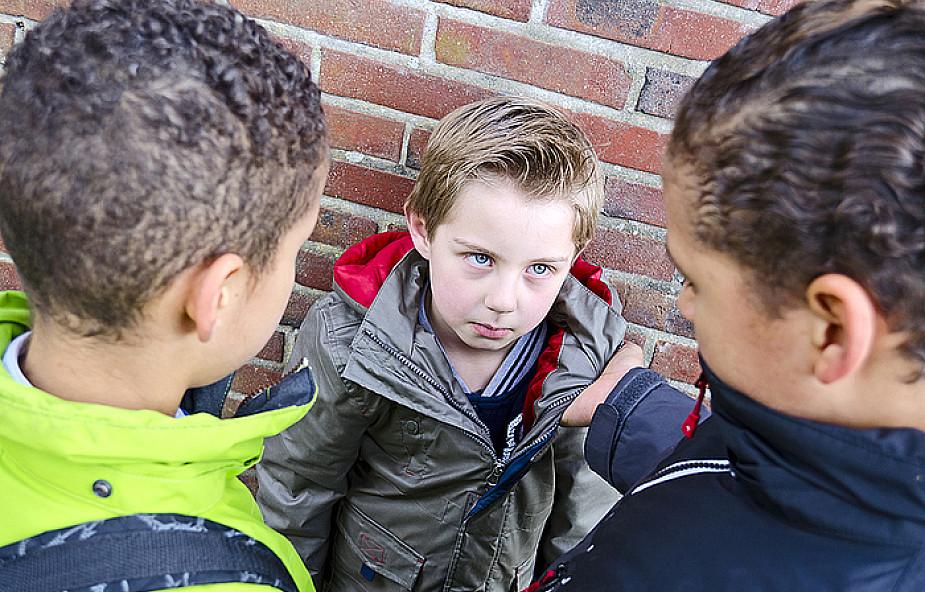 Przemoc i agresja w szkole. Kto jest temu winny?