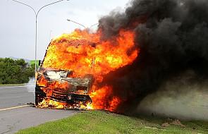 Spłonęli w samochodzie po zderzeniu z jeleniem