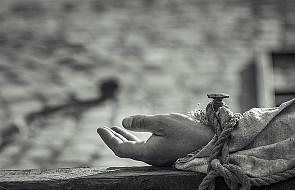#Ewangelia: Łagodny, cierpliwy i uparty