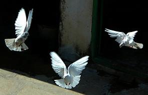 Kielce: trwają medytacje w intencji pokoju
