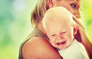 Matka zastępcza nie chce oddać dziecka gejom