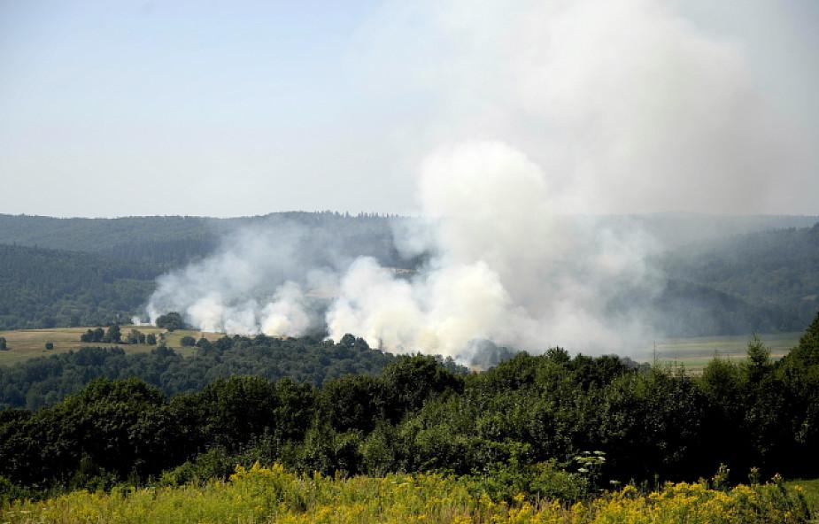 W Polsce szaleją pożary. Strażacy apelują o rozwagę