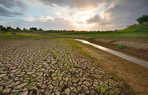 """""""Rząd tylko symuluje pomoc w związku z suszą"""""""