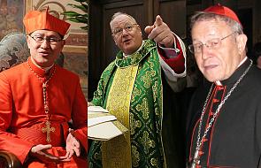"""Kogo papież nominował na Synod? Poznaj """"ludzi Franciszka"""""""