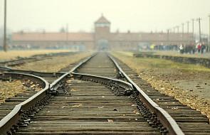 Beatyfikacja ks. Machy, ofiary Gestapo, coraz bliżej