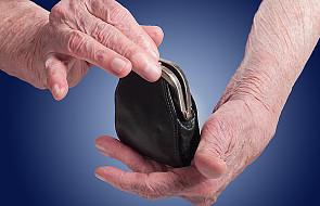 PSL złoży projekt dot. emerytur jako obywatelski