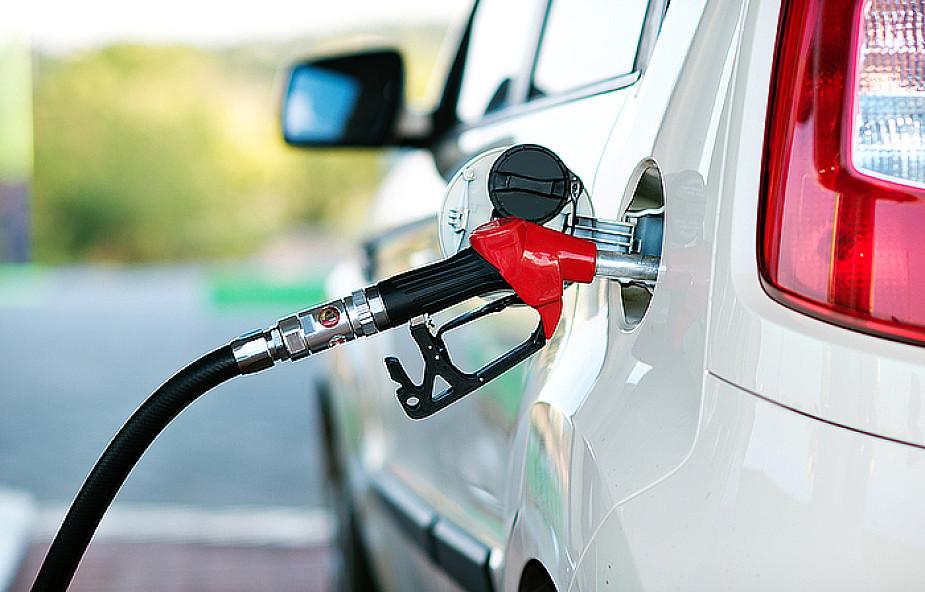 USA: ropa staniała o 3,7 procent