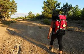 Camino: nowy rekord liczby pielgrzymów?