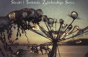 Wojciech Ziółek SJ: Strąki - tęsknota zgłodniałego serca
