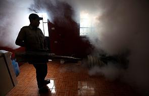 Wiosną wirus Zika może zagrozić Europie