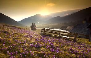 Zobacz cztery pory roku w Tatrach [WIDEO]