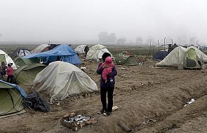 Czechy odeślą do Iraku uchodźców