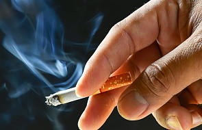 Wschodni dymek kusi polskich palaczy