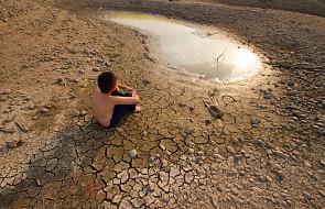 Jak poradzić sobie ze zmianami klimatu?