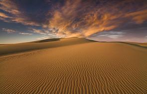 Wiele tysięcy lat temu na pustyni Gobi kwitło życie