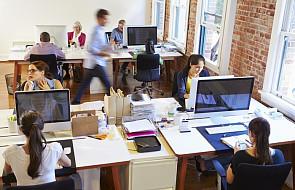 48 proc. oprogramowania w Polsce jest używana bez licencji