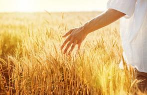#Ewangelia: jak zacząć żyć w zgodzie ze Słowem Bożym?