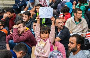 """""""UE może liczyć na pomoc OBWE ws. uchodźców"""""""