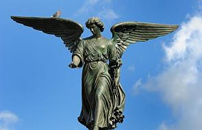 5 rzeczy, które powinieneś wiedzieć o aniołach