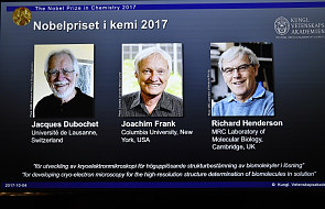Przyznano nagrodę Nobla z chemii - za prace związane z obrazowaniem białek