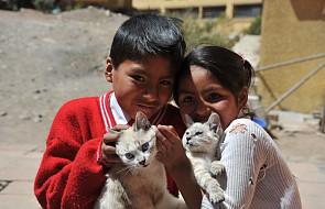 """Posłano wolontariuszki na misje do Boliwii. """"Tam wciąż brakuje katechetów i nauczycieli"""""""