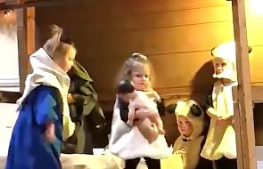 Napięcie w Betelejem: co się stanie, kiedy Aniołek ukradnie Dzieciątko?