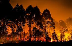 Pożar zagraża setkom domów na północ od Los Angeles