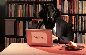 """""""DEON.pl zszedł na psy"""" [WIDEO]"""