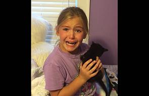 Reakcja dziewczynki na małego kotka. Właśnie obejrzało ją 34 mln ludzi
