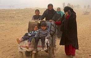 Irak: dramat ludności cywilnej w Mosulu trwa