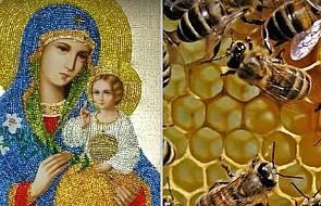 Te pszczoły są pobożniejsze niż większość ludzi