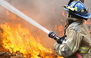 USA: ok. 5 tys. strażaków walczy z pożarami w Kalifornii