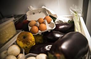 Komisja Europejska: skażone jaja w 15 krajach UE, w tym w Polsce