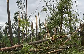 Tragedia w Suszku: burza zabiła dwoje harcerzy. ZHR ogłasza żałobę