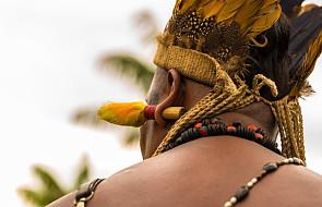 Blisko 80 proc. zabójstw w Amazonii jest popełnianych z powodu walk o ziemię