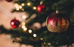 Kiedy trzeba rozebrać choinkę i schować świąteczne ozdoby?