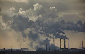 List polskich biskupów o smogu i grzechach ekologicznych: nie możemy egoistycznie podbijać stworzonego świata